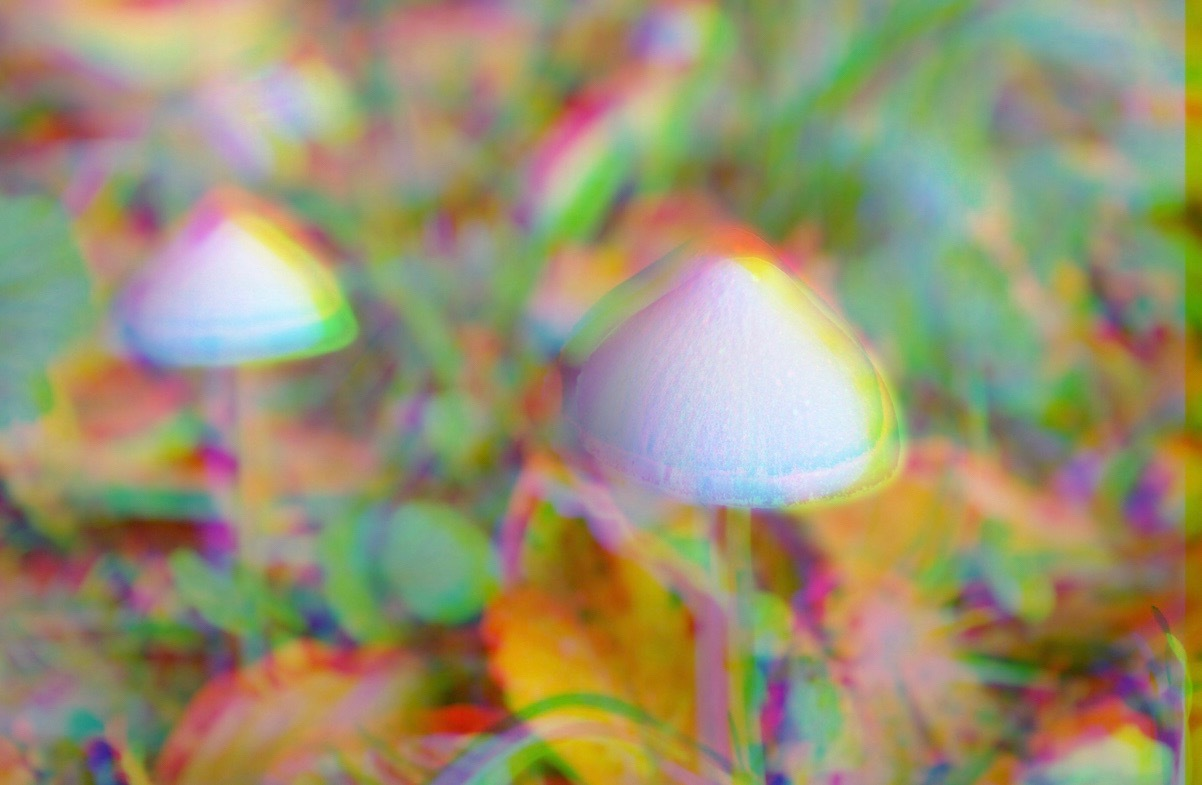 how to get medically approved psilocybin in vancouver
