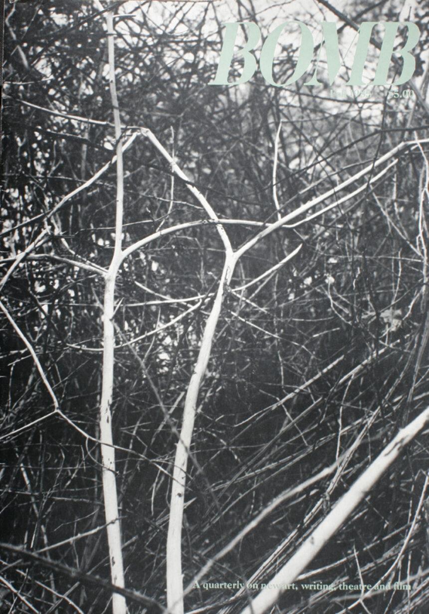 013 Fall 1985