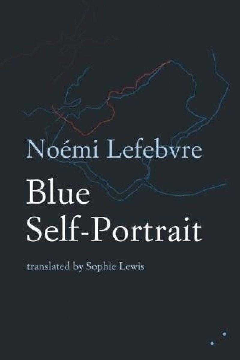273853605 08092017 Noemi Lefebvre Blue Self Portrait Book