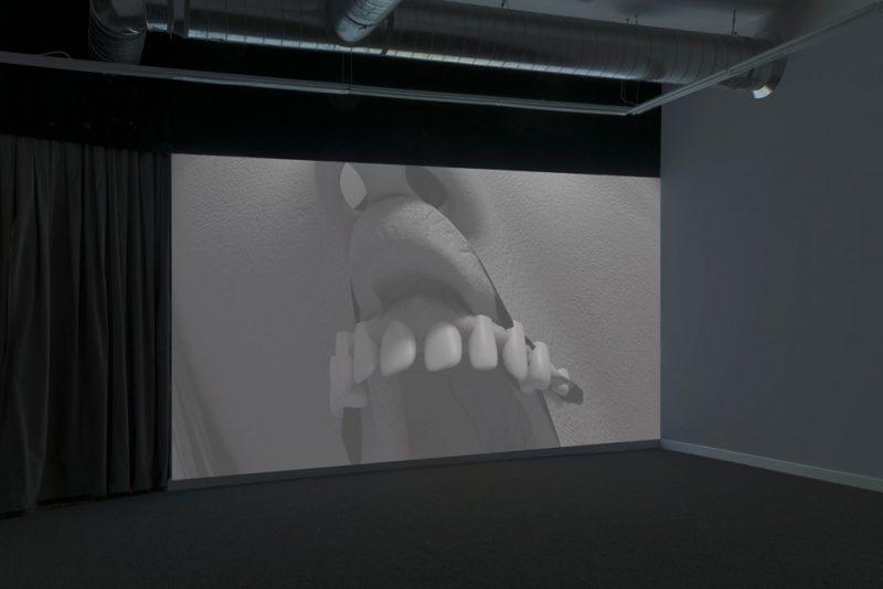 Andrew Norman Wilson,KODAK, 2018. Installation view at DOCUMENT, Chicago