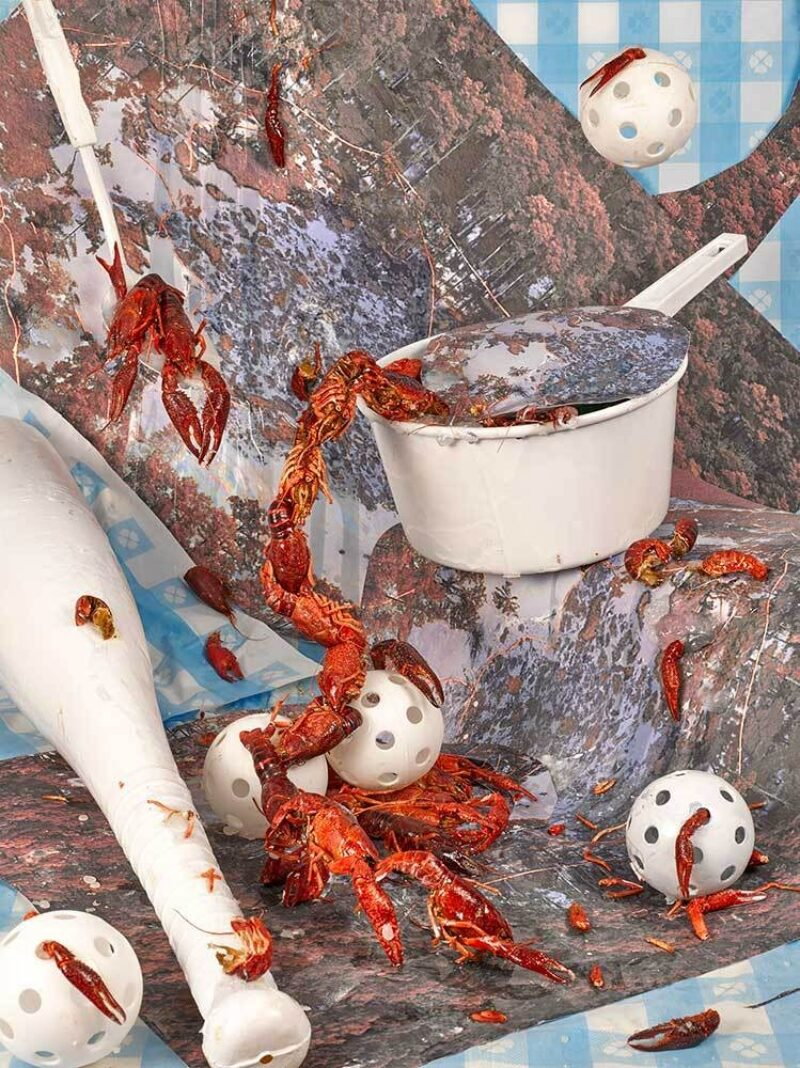 a collage featuring lobsters a white pot and whiffle balls and a bat titled, Bayou Choctaw Sweet, Sheida Soleimani