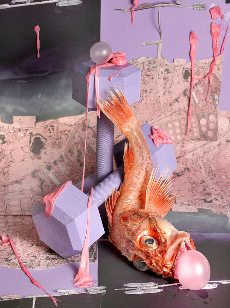 a collage featuring a red fish with a pink balloon coming out of its mouth rest on purple dumbbells titled, Iran Heavy, by Sheida Soleimani